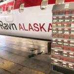 TwinBin Alaska